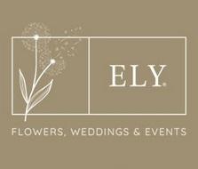 Ely Flowers, Weddings & Events (Ely Flores - florista Arte e Decoração)